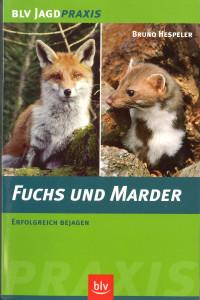 Fuchs und Marder